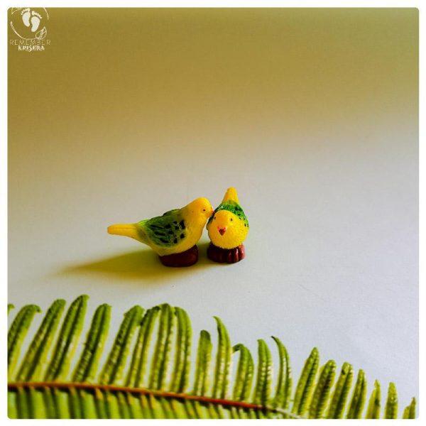 parrot shuka krishna friend
