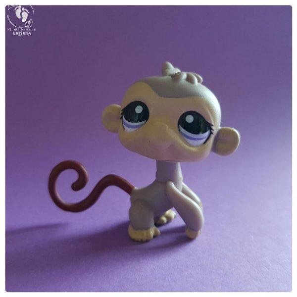 monkey toy friend of krishna dandilobha