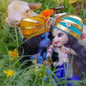 Krsna and Balaram Lounge around in the grass of goverdhan hill poseable bjd dolls krsna doll balaram doll