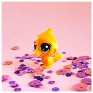 Cute little canary singing bird friend of krsna